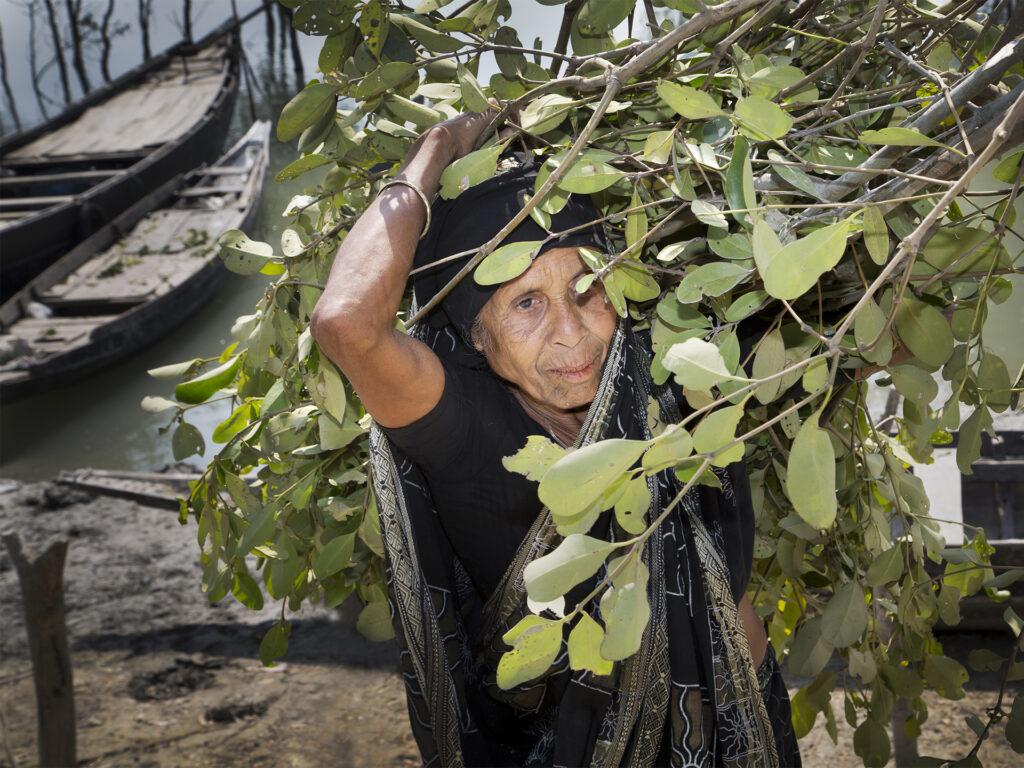 Kvinna bär på grenar över axeln