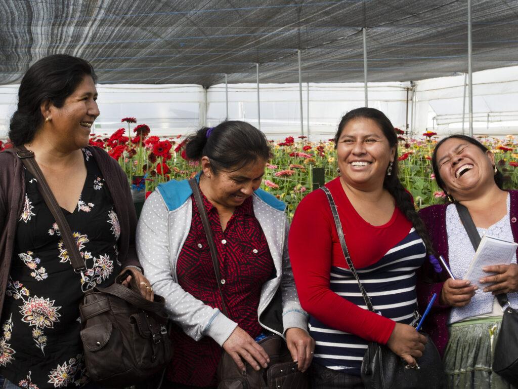 Fyra kvinnor sitter tillsammans i ett växthus och skrattar.