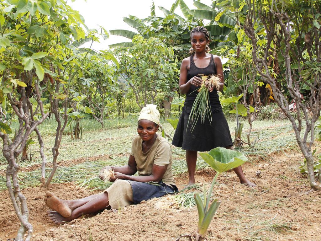 En sittande kvinna och en stående kvinna i ett odlingsfält. I bakgrunden syns träd.