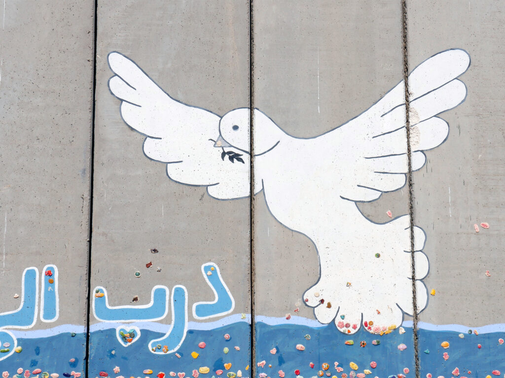 fredsduva på separationsmur