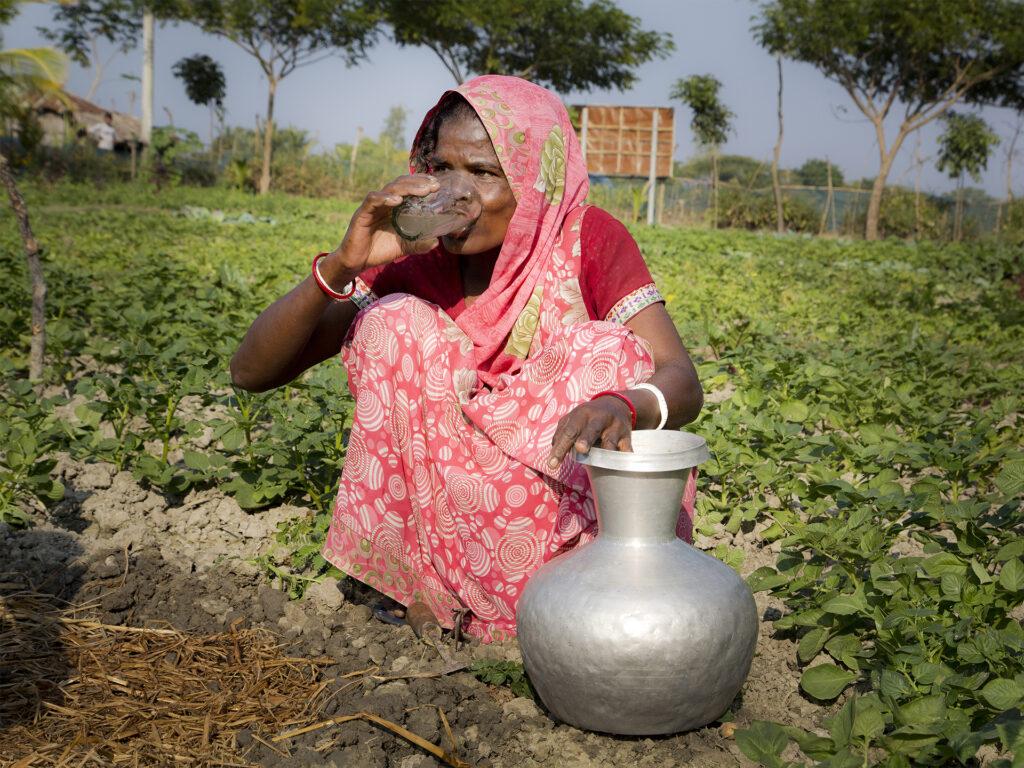 Kvinna på ett fält dricker vatten