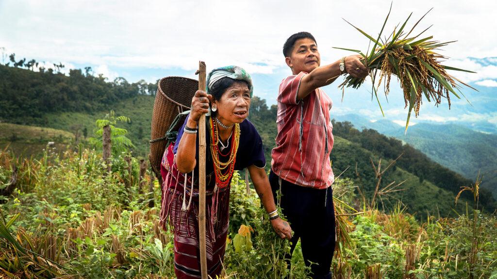 En äldre kvinna och en ung man står i ett stort grönt fält. Kvinnan har färgglada halsband runt halsen och en flätad korg på ryggen.