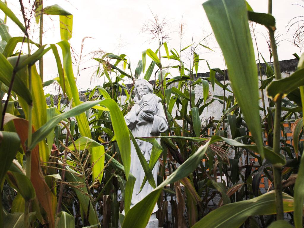 En staty i vit sten av Jesus i ett grönt fält.