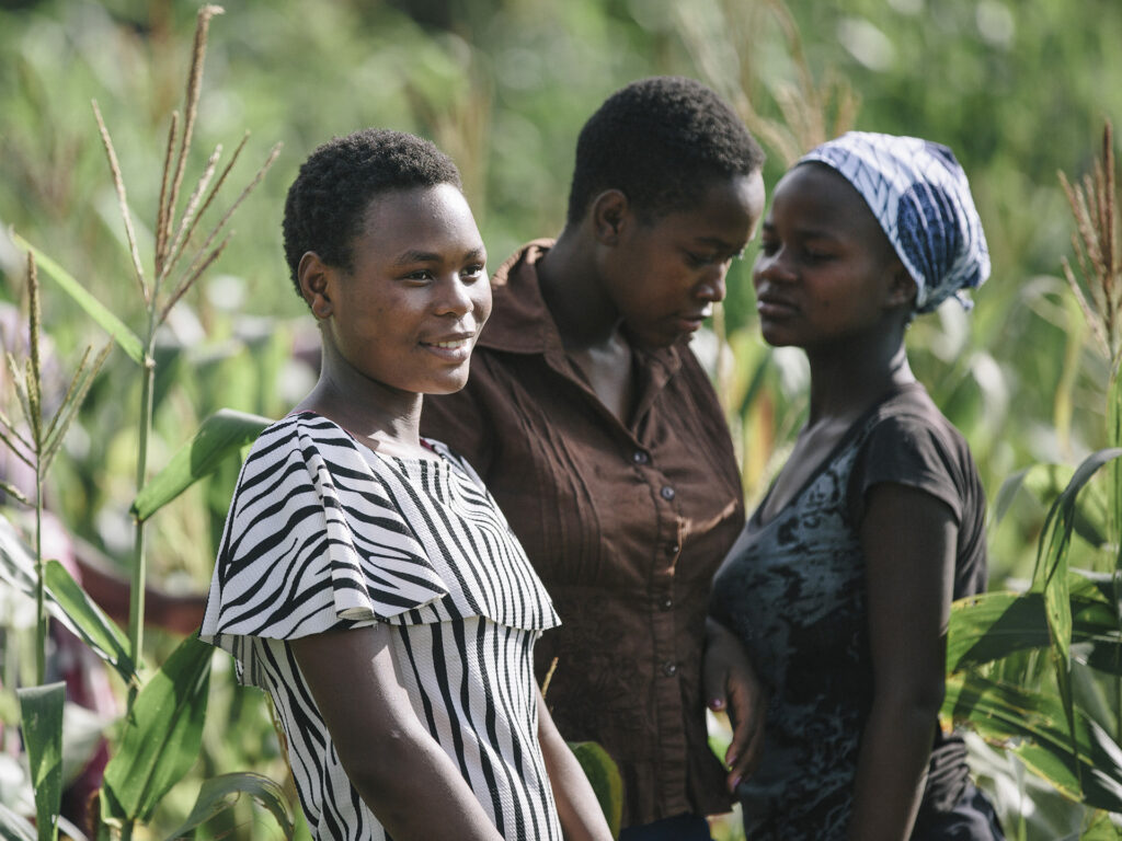 Three Zimbabwean women standing in a field of crops.